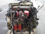 Engine SERIES 50 Gillig 275HP (NEEDS RBLD)